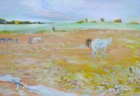 Pferdsein Herde, 2014
