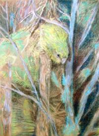 Kakapo im Baum, 2010