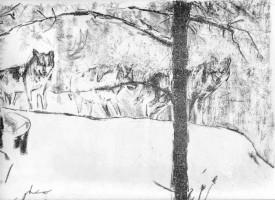 Schneetreiben, 2014