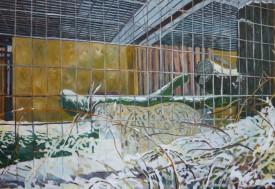 Schneeleopard Askin, 2009