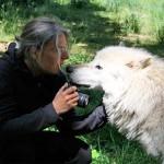 Beate Domansky mit Wolf im Wolfsforschungszentrum in Ernstbrunn/Österreich