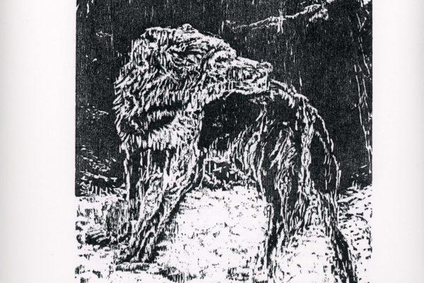 """Künstlerbuch """"Der Wolf"""" von Hermann Hesse"""